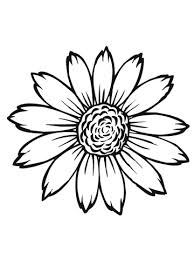 Small Picture Flowering Head of Sunflower coloring page Free Printable