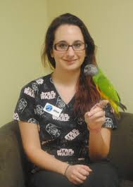 kensington bird and animal hospital veterinarians and staff allison zeranski