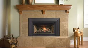 fireplace inserts portland oregon. excellent inspiration ideas fireplace inserts portland oregon 3 modern style shop gas g
