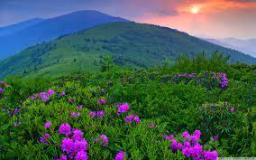 Green Mountains Ultra HD Desktop ...