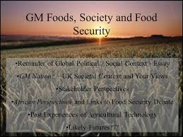 gm foods society and food security reminder of global political  1 gm foods