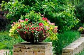 container gardening services what are