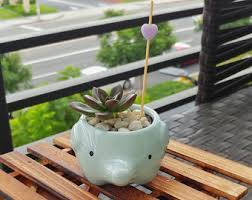 office planter. elephant succulent planter ceramic animal pot mini for home decor office