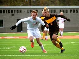 Rochester Adams falls to Canton in state final