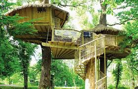 Tree House At Putput Village  Kavieng Niu Lodge Motel New Treehouse Accommodation Ireland
