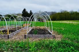 garden hoop house row covers raised beds vegetable garden