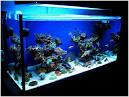Как и чем заклеить аквариум в домашних