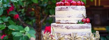 Cake Decorating Macquarie Community College