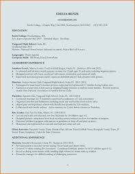 Download Resume Form Bio Resume Samples