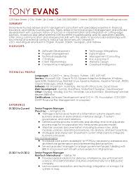 Stunning Fake Resume Pictures Simple Resume Office Templates