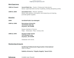 Sample Resume Job Application Pdf Of For Applying Example Template