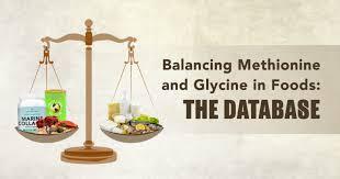 Foods Low In Methionine Chart Balancing Methionine And Glycine In Foods The Database