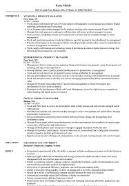 Product Management Resume Resumes Digital Manager Sample Samples