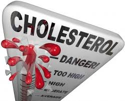 Image result for pics in regard to cholesterol