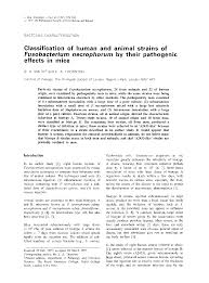 microbiology society journals classification of human and animal   preview thumbnail magnify