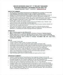 Business Analyst Resume Summary Examples Gorgeous Click Here To Download This Technology Business Analyst Resume