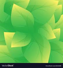 Green Leaf Background Beautiful Leaves Texture