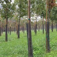 leonard rigid plastic mesh tree guard
