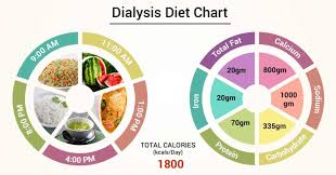 Thalassemia Major Diet Chart Diet Chart For Dialysis Patient Dialysis Diet Chart Lybrate