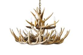 whitetail deer 15 antler chandelier