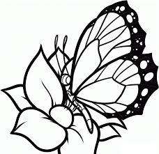 Butterflies And Flowers Coloring Pages Getcoloringpagescom