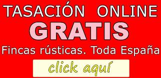 Cuidado Con Las Tasaciones De Casas Online La Dispersión Supera Tasacion De Pisos Gratis