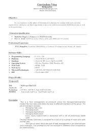 Resume Of An It Professional – Esdcuba.co