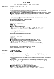 Qa Team Lead Resume Contegri Com Qa Game Tester Cv Sample