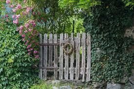 Billedresultat for vintage garden