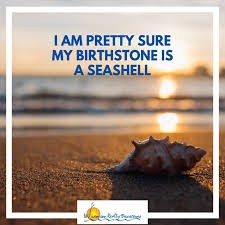 sea shell quotes inspiring quotes to put you in the beach mood