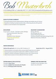 Best Resume Examples 2017 Beautiful Delightful Resume Template Word