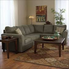 rug new rug best outdoor rugs fresh michaelieclark and luxury rug