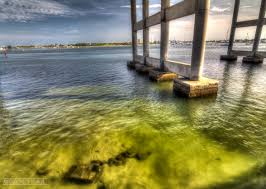 Palm Beach County Tide Chart Tide Info Blue Heron Bridge Scuba