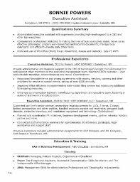 Resume Awesome Executive Resume Template Word Executive Resume