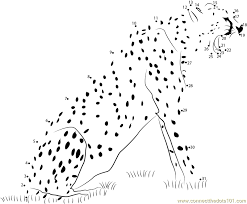 dot to dot animals. Plain Animals Animal State Cheetah  Connect The Dots For Kids Throughout Dot To Animals