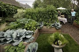 Ornamental Kitchen Garden Formal Vegetable Garden In St Paul Is Beautiful Productive