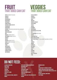 Fruits And Veggies That Dogs Can Eat Foods Dogs Can Eat