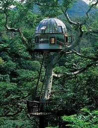 tree house designs. I\u0027m Not An Old School Tree House Enthusiast Who May See A Structure Like This And Balk. All About Innovation. How Far Can Design Be Pushed? Designs