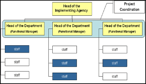 Ptt Organization Chart Functional Organization Structure Contract Actors In Project