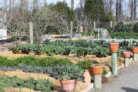 self guided edible garden tour