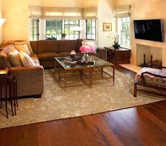 family room area rugs houzz