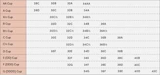 Bra Size Chart G Bra Size Chart Thirdlove Bra Size Charts Bra Sizes