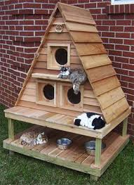 25+ Best Outdoor Cat Houses Ideas On Pinterest Outdoor Cats - HD Wallpapers