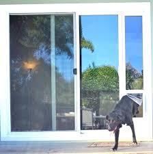 home depot doggie door patio patio pet door exterior door with built in pet small dog