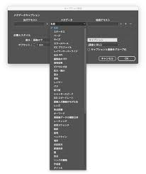 Indesignで画像キャプション ポット出版
