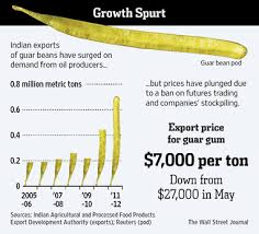 Guar Seed Rate Jodhpur