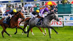 2017 Breeders Cup Charts Dual Group 1 Winner Capri Charts Path To Ascot Gold Cup In