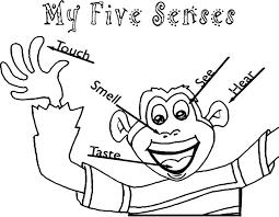 Five Sense Coloring Pages Five Sense Coloring Pages Free Printable 5