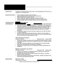 Example Of Computer Skills On Resumes The Literature Network Essay Information Computer Skills