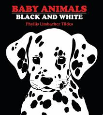 black and white pictures for babies printable baby animals black white baby board book